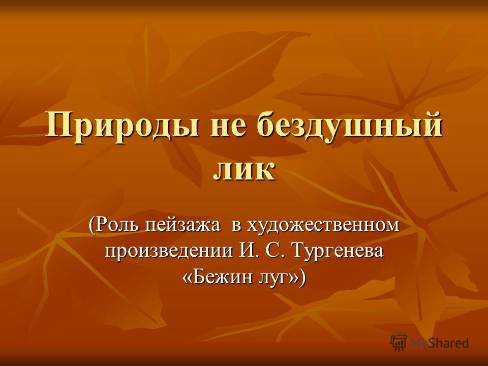 Природы не бездушный лик (Роль пейзажа в художественном произведении И. С. Тургенева «Бежин луг»)