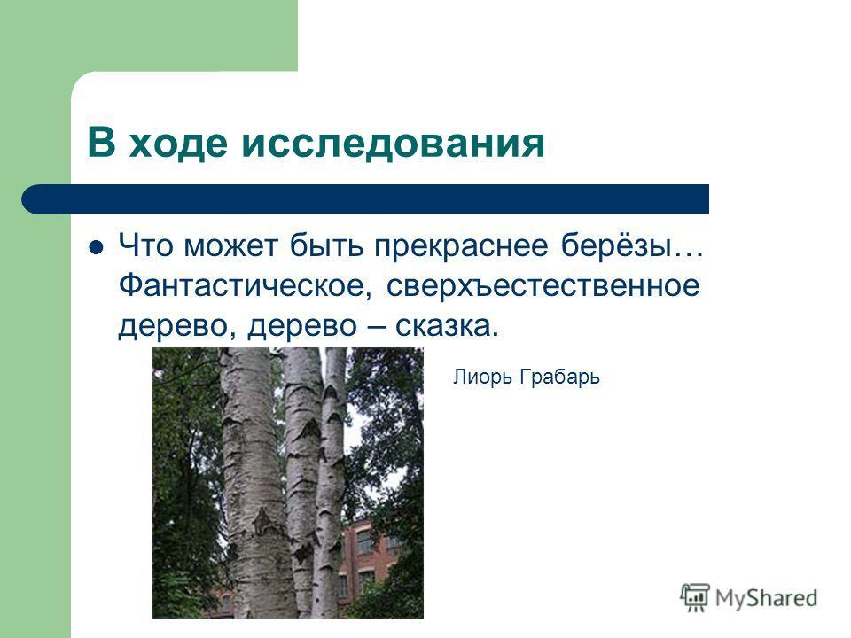 В ходе исследования Что может быть прекраснее берёзы… Фантастическое, сверхъестественное дерево, дерево – сказка. Лиорь Грабарь