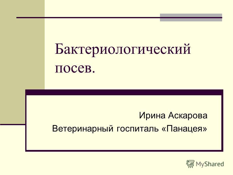 Бактериологический посев. Ирина Аскарова Ветеринарный госпиталь «Панацея»