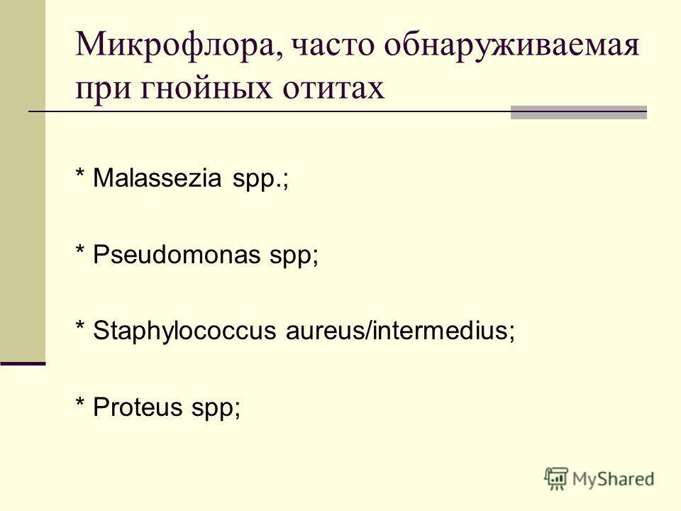 Микрофлора, часто обнаруживаемая при гнойных отитах * Malassezia spp.; * Pseudomonas spp; * Staphylococcus aureus/intermedius; * Proteus spp;