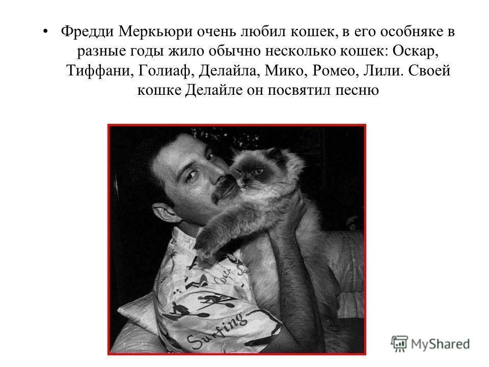 Фредди Меркьюри очень любил кошек, в его особняке в разные годы жило обычно несколько кошек: Оскар, Тиффани, Голиаф, Делайла, Мико, Ромео, Лили. Своей кошке Делайле он посвятил песню