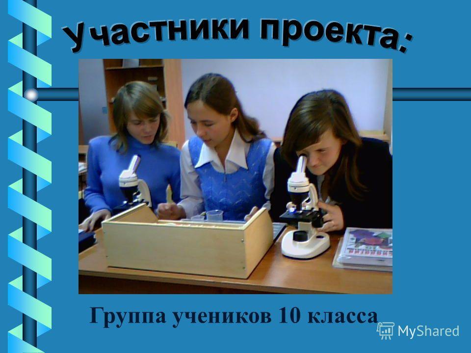 Группа учеников 10 класса