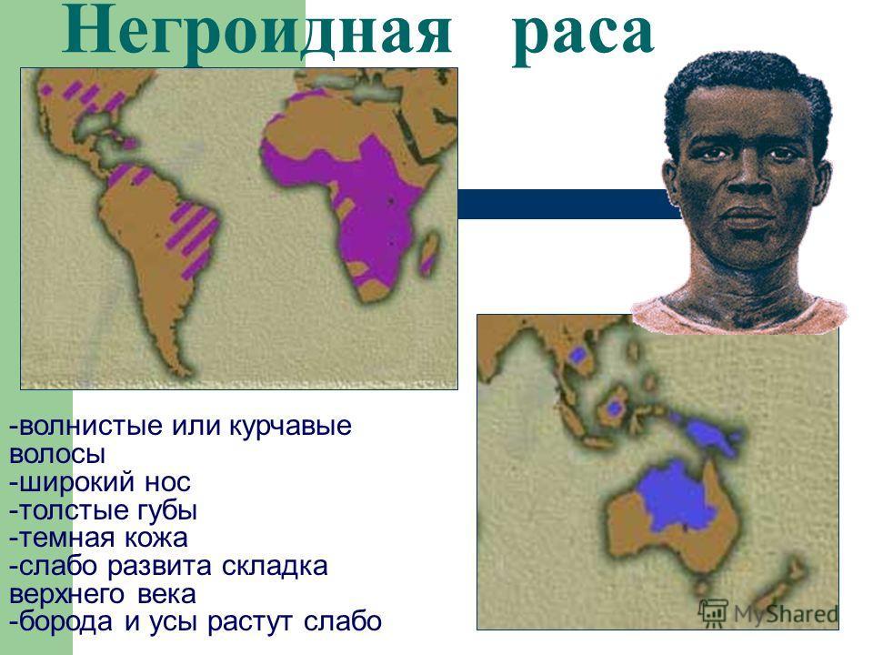 Характеристика человеческих рас Характерные особенности Расы негроидная европеоидная монголоидная Причины различий Цвет кожи Цвет и форма волос Форма носа Разрез глаз Ареал обитания