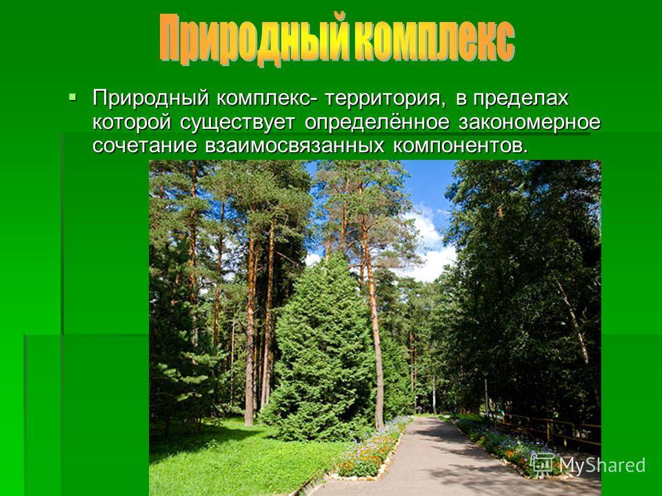 Природный комплекс- территория, в пределах которой существует определённое закономерное сочетание взаимосвязанных компонентов. Природный комплекс- территория, в пределах которой существует определённое закономерное сочетание взаимосвязанных компонент