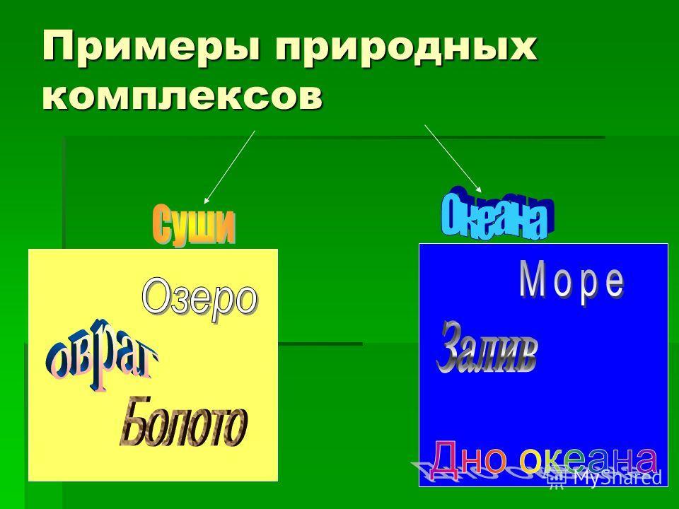 Примеры природных комплексов