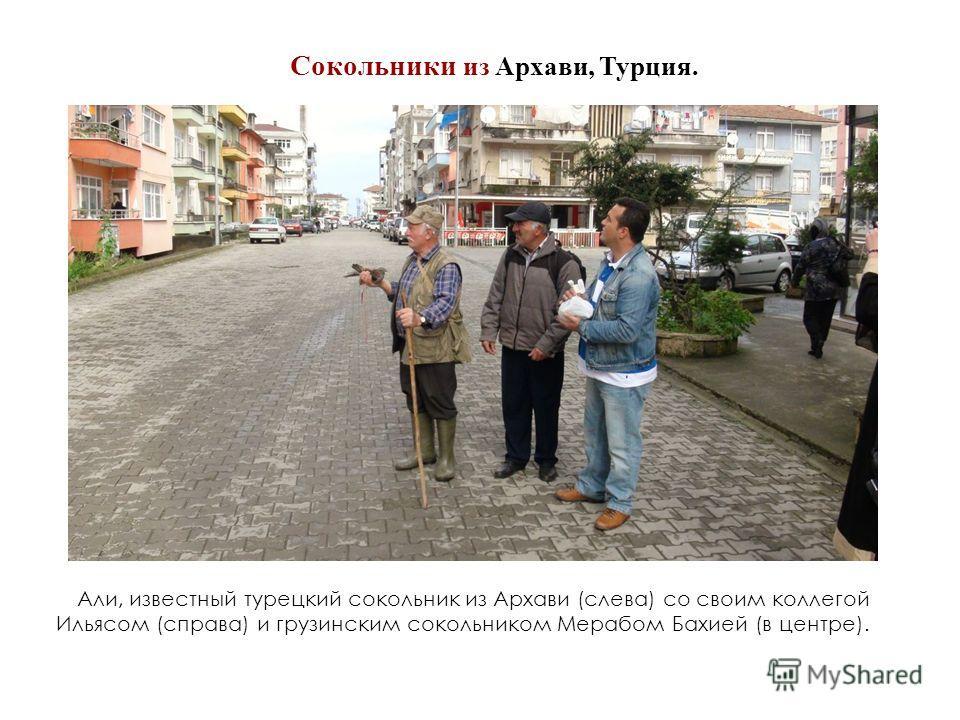 Али, известный турецкий сокольник из Архави (слева) со своим коллегой Ильясом (справа) и грузинским сокольником Мерабом Бахией (в центре). Сокольники из Архави, Турция.