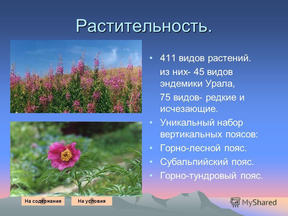 Растительность. 411 видов растений. из них- 45 видов эндемики Урала, 75 видов- редкие и исчезающие. Уникальный набор вертикальных поясов: Горно-лесной пояс. Субальпийский пояс. Горно-тундровый пояс. На содержаниеНа условия