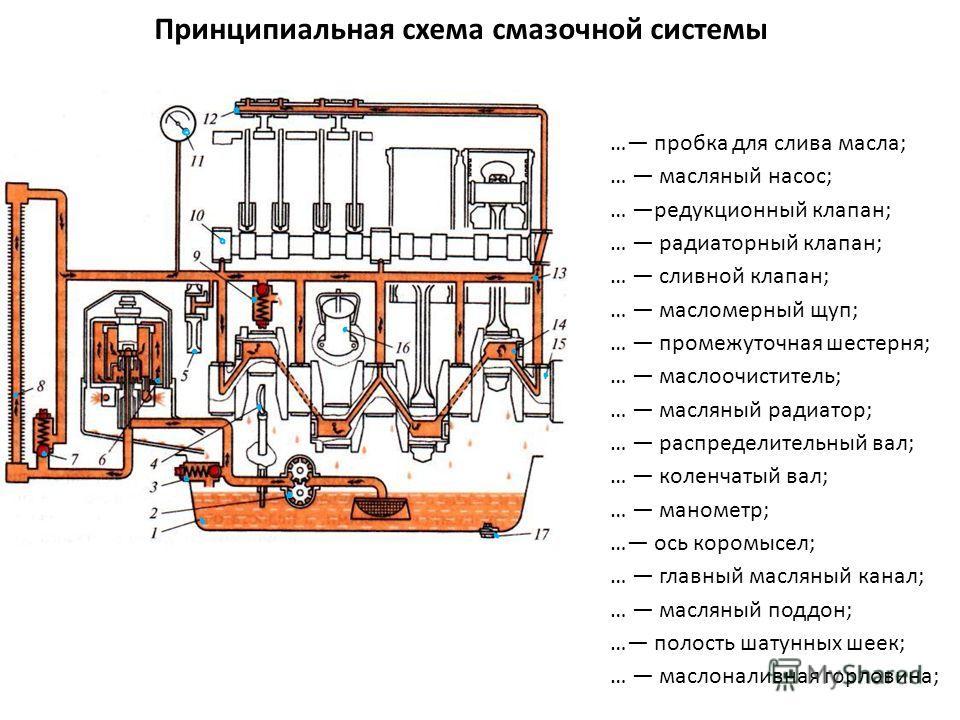 Принципиальная схема смазочной системы … пробка для слива масла; … масляный насос; … редукционный клапан; … радиаторный клапан; … сливной клапан; … масломерный щуп; … промежуточная шестерня; … маслоочиститель; … масляный радиатор; … распределительный