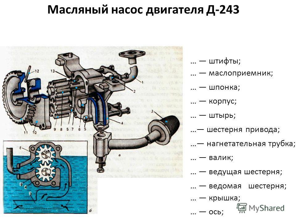 Масляный насос двигателя Д-243 … штифты; … маслоприемник; … шпонка; … корпус; … штырь; … шестерня привода; … нагнетательная трубка; … валик; … ведущая шестерня; … ведомая шестерня; … крышка; … ось;