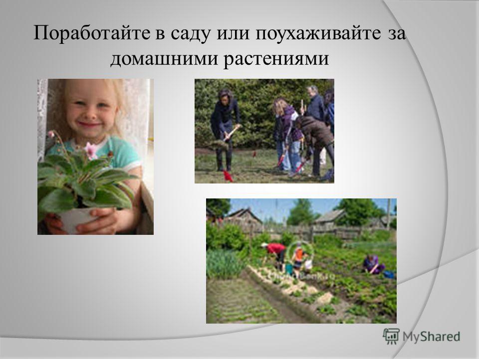 Поработайте в саду или поухаживайте за домашними растениями