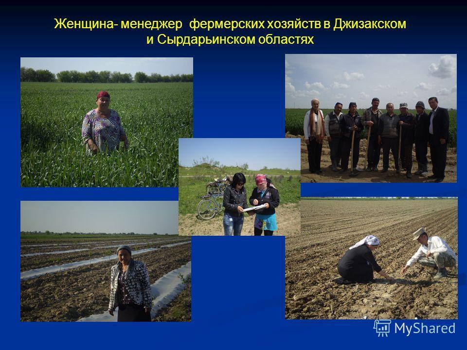 Женщина- менеджер фермерских хозяйств в Джизакском и Сырдарьинском областях