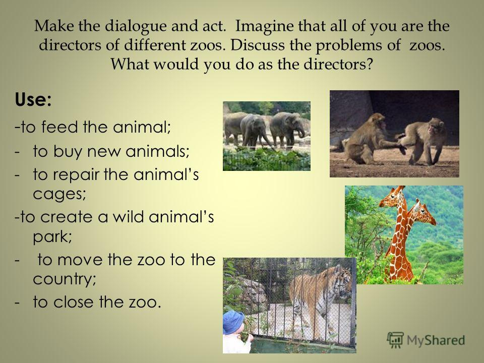Make the dialogue and act. Imagine that all of you are the directors of different zoos. Discuss the problems of zoos. What would you do as the directors? Use: - to feed the animal; -to buy new animals; -to repair the animals cages; -to create a wild