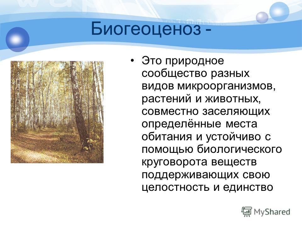Биология 10 класс пономарева корнилова лощилина ответы проверьте себя
