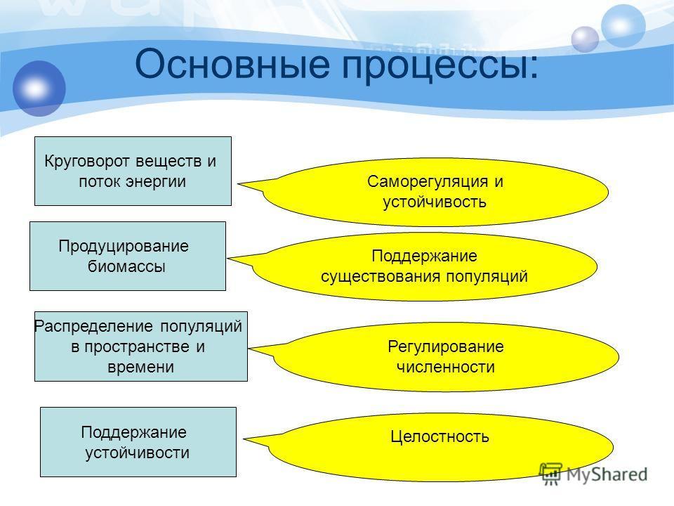 Основные процессы: Круговорот веществ и поток энергии Продуцирование биомассы Распределение популяций в пространстве и времени Поддержание устойчивости Саморегуляция и устойчивость Поддержание существования популяций Регулирование численности Целостн