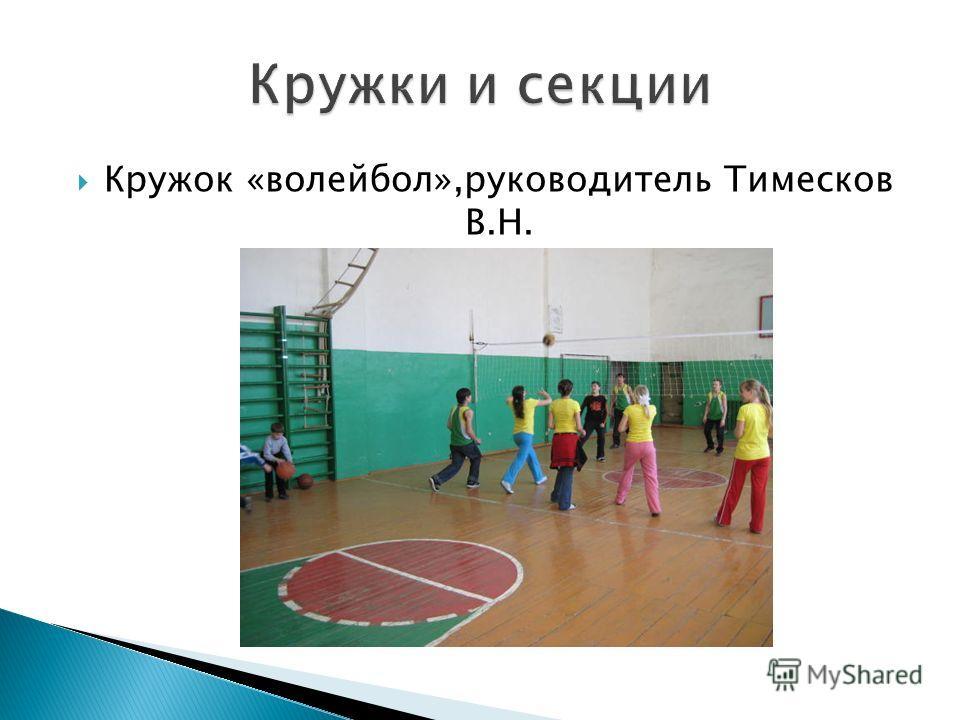Кружок «волейбол»,руководитель Тимесков В.Н.