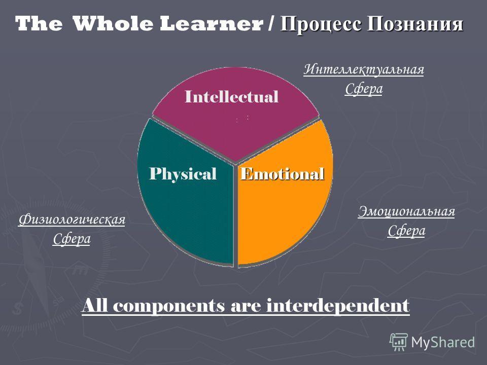 PhysicalEmotional Intellectual Процесс Познания The Whole Learner / Процесс Познания All components are interdependent Интеллектуальная Сфера Физиологическая Сфера Эмоциональная Сфера