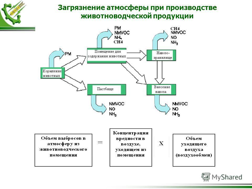 Загрязнение атмосферы при производстве животноводческой продукции