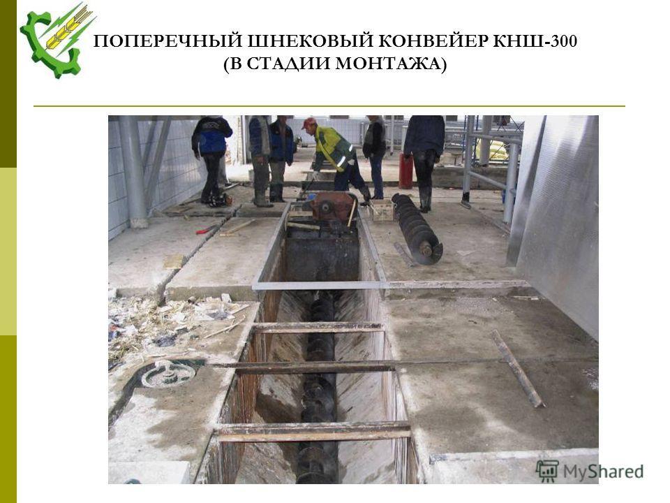 ПОПЕРЕЧНЫЙ ШНЕКОВЫЙ КОНВЕЙЕР КНШ-300 (В СТАДИИ МОНТАЖА)