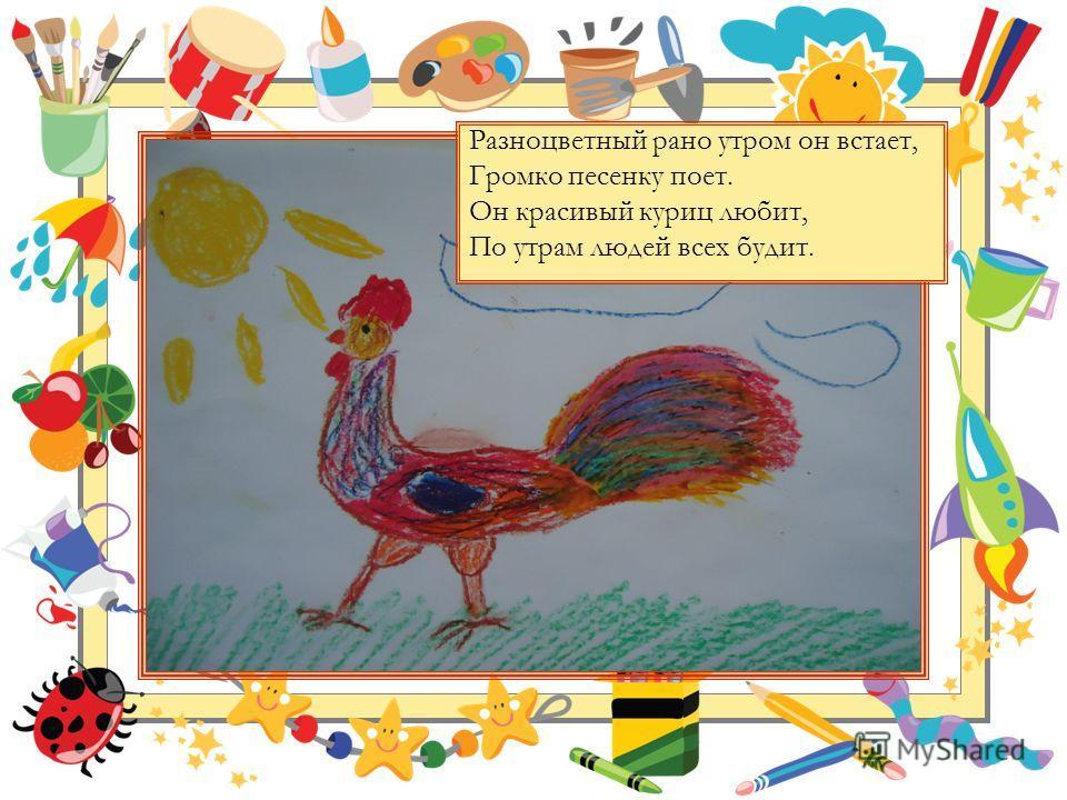 Разноцветный рано утром он встает, Громко песенку поет. Он красивый куриц любит, По утрам людей всех будит.