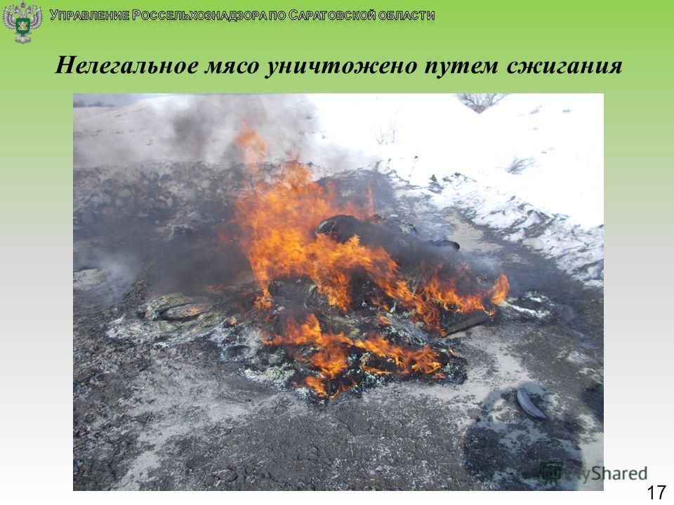Нелегальное мясо уничтожено путем сжигания 1717