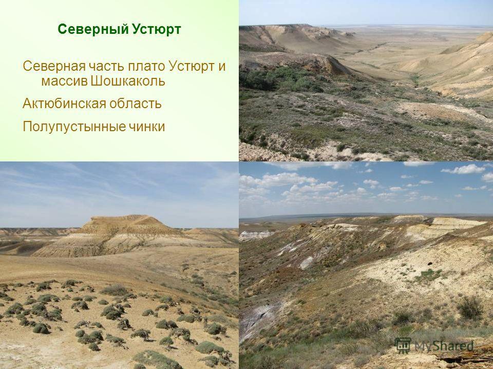 Северная часть плато Устюрт и массив Шошкаколь Актюбинская область Полупустынные чинки Северный Устюрт 4