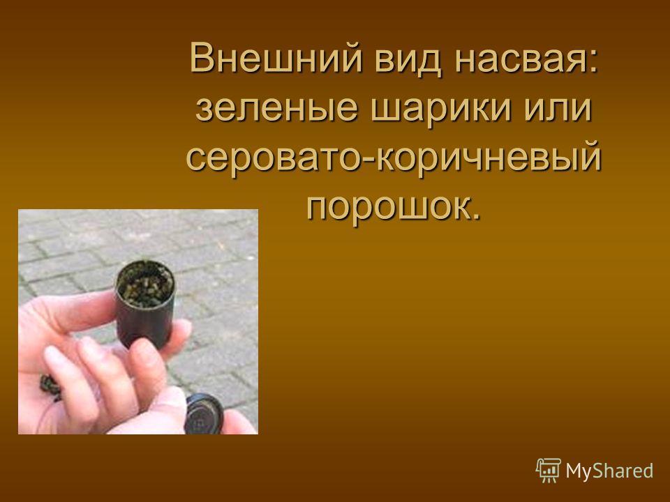 Внешний вид насвая: зеленые шарики или серовато-коричневый порошок.