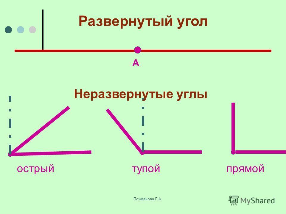 Пожванова Г.А. Развернутый угол А Неразвернутые углы острыйтупойпрямой