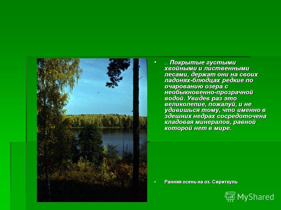 .. Покрытые густыми хвойными и лиственными лесами, держат они на своих ладонях-блюдцах редкие по очарованию озера с необыкновенно-прозрачной водой. Увидев раз это великолепие, пожалуй, и не удивишься тому, что именно в здешних недрах сосредоточена кл