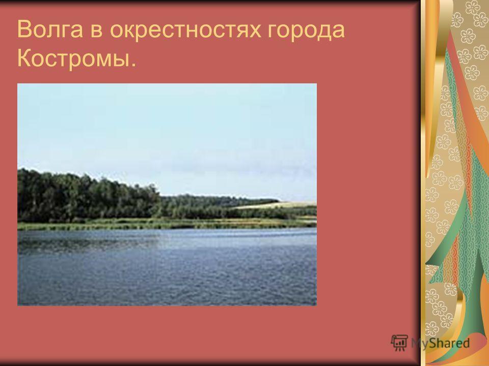 Волга в окрестностях города Костромы.