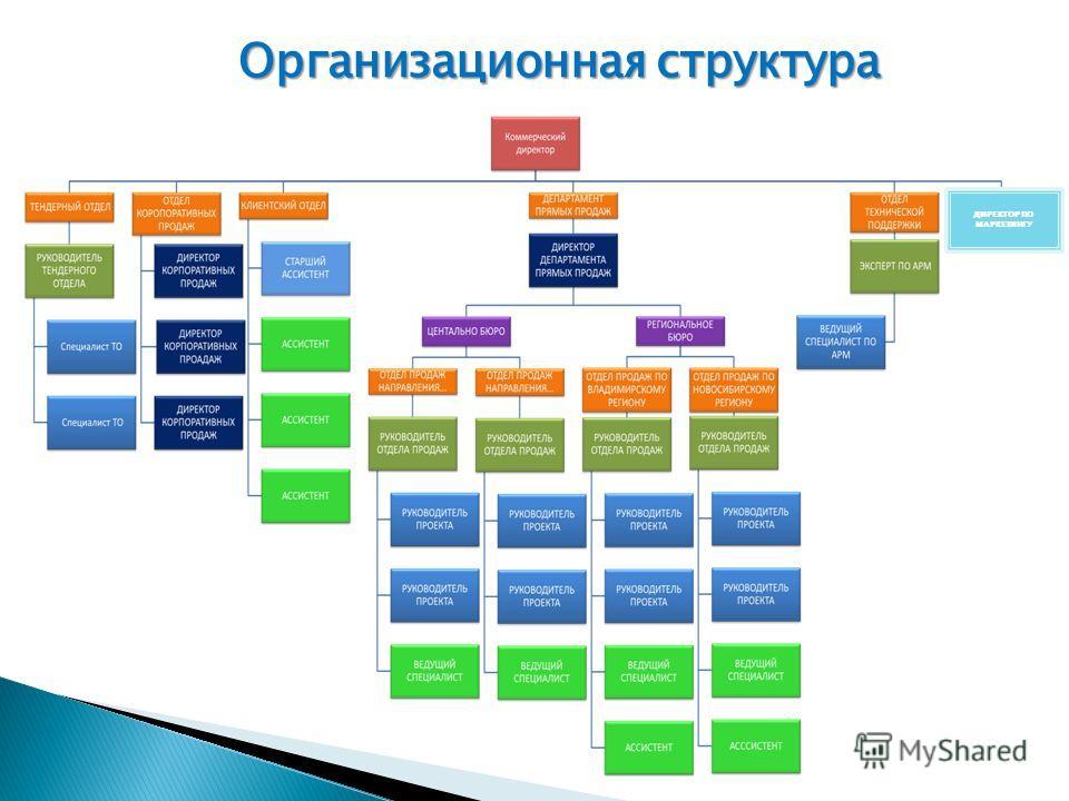 Организационная структура ДИРЕКТОР ПО МАРКЕТИНГУ