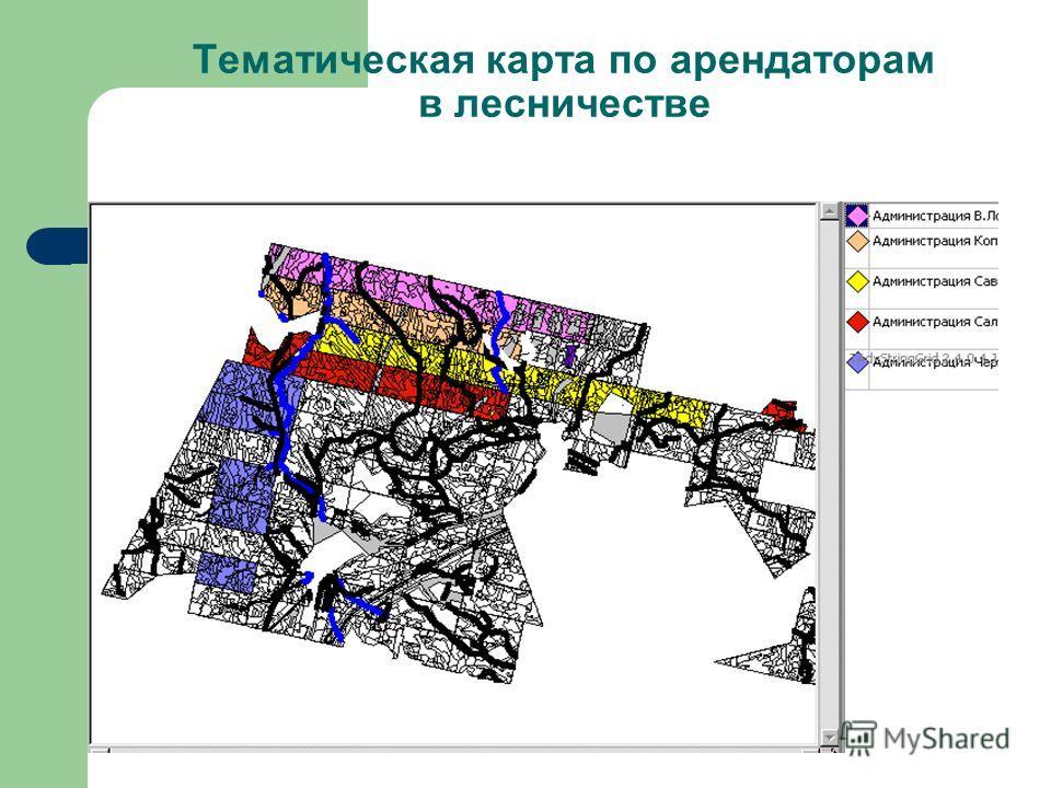 Тематическая карта по арендаторам в лесничестве