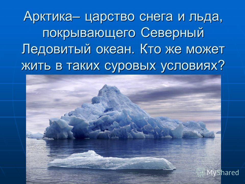 Арктика– царство снега и льда, покрывающего Северный Ледовитый океан. Кто же может жить в таких суровых условиях?