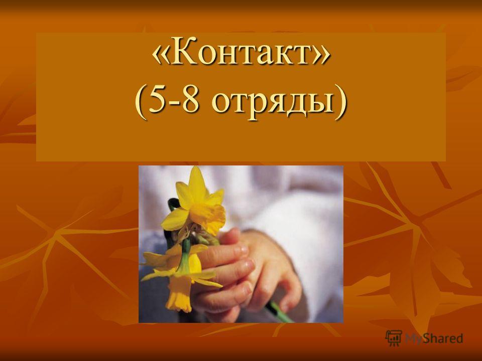 «Контакт» (5-8 отряды)