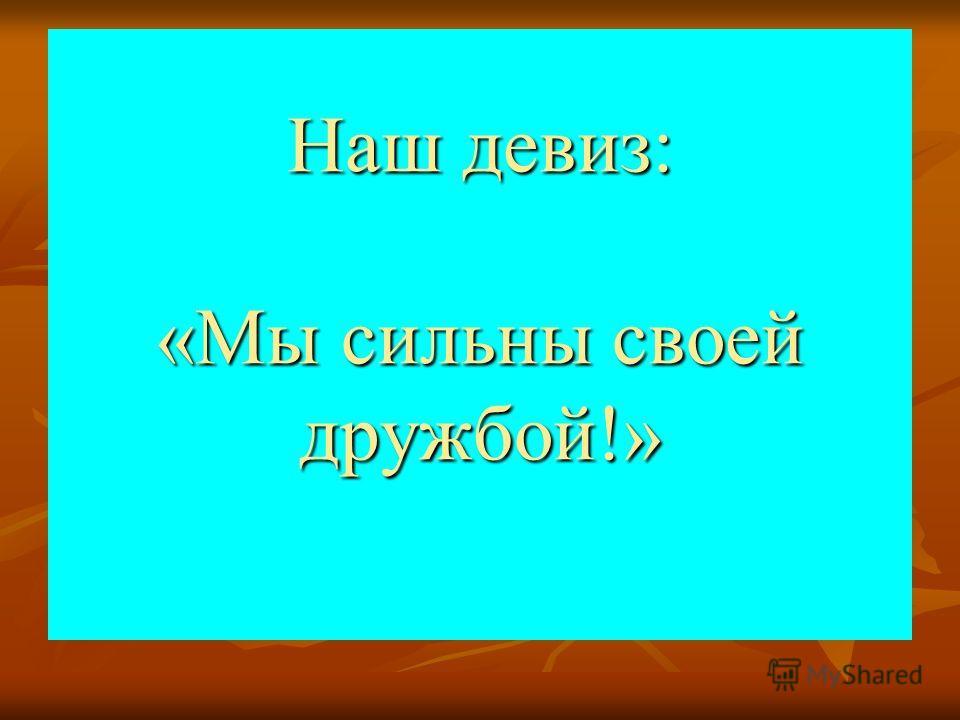 Наш девиз: «Мы сильны своей дружбой!»