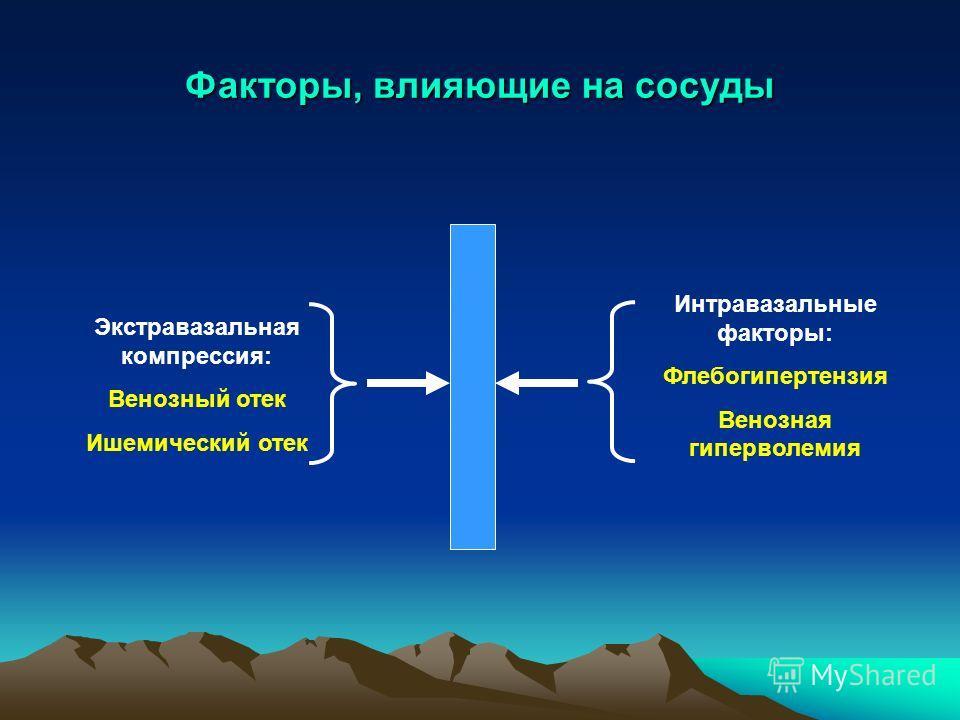 Факторы, влияющие на сосуды Экстравазальная компрессия: Венозный отек Ишемический отек Интравазальные факторы: Флебогипертензия Венозная гиперволемия