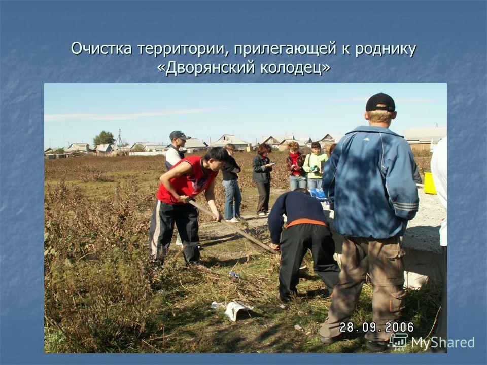 Очистка территории, прилегающей к роднику «Дворянский колодец»
