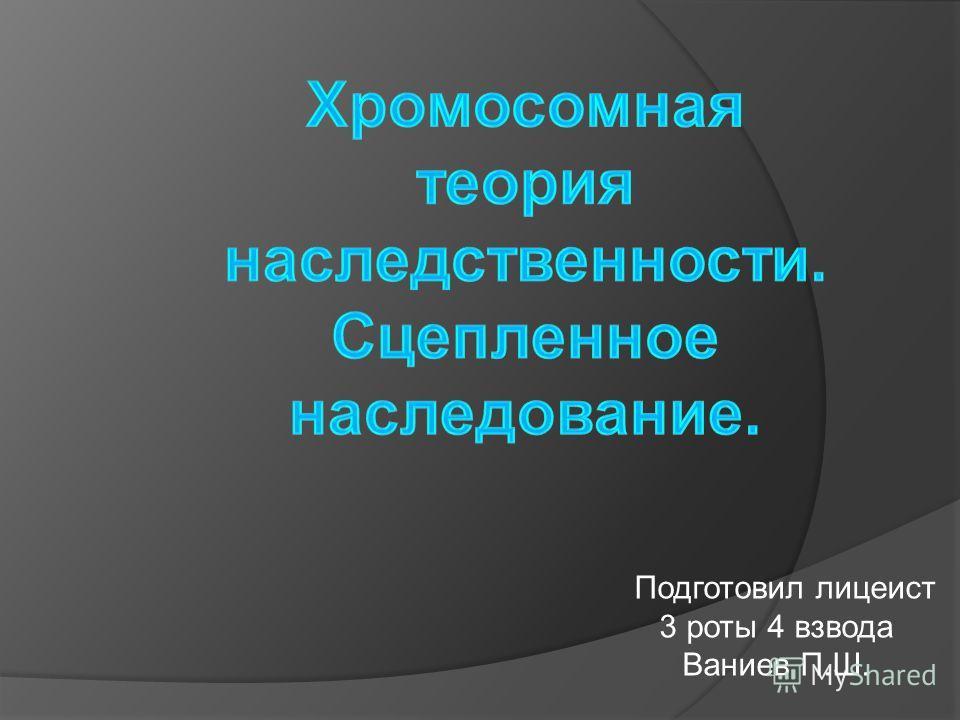 Подготовил лицеист 3 роты 4 взвода Ваниев П.Ш.