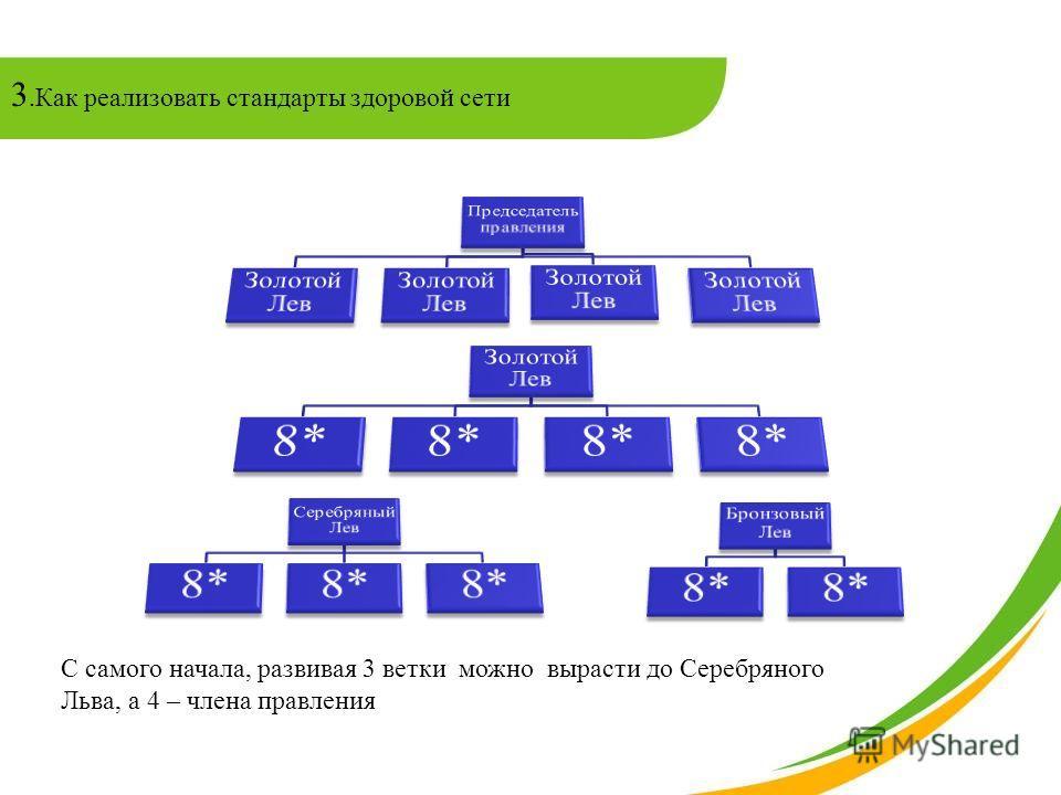 3.Как реализовать стандарты здоровой сети С самого начала, развивая 3 ветки можно вырасти до Серебряного Льва, а 4 – члена правления