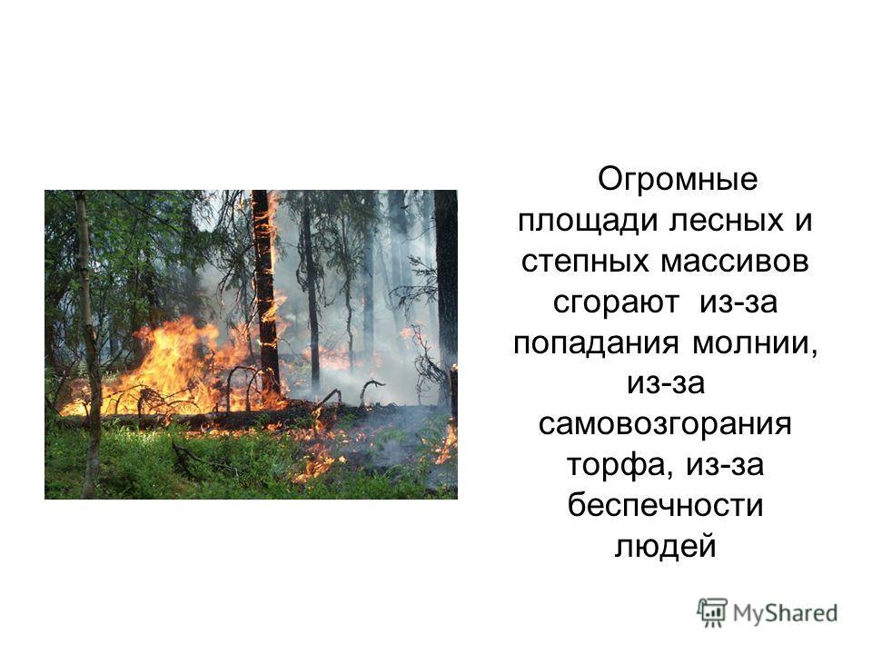 Огромные площади лесных и степных массивов сгорают из-за попадания молнии, из-за самовозгорания торфа, из-за беспечности людей