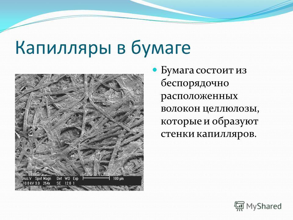 Капилляры в бумаге Бумага состоит из беспорядочно расположенных волокон целлюлозы, которые и образуют стенки капилляров.