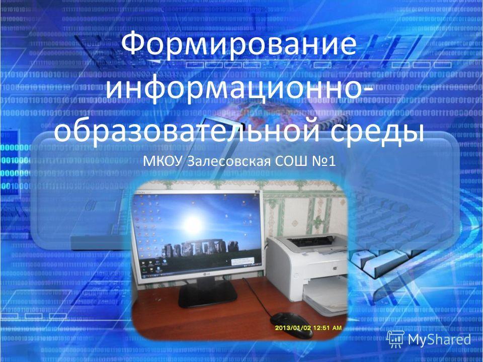 Формирование информационно- образовательной среды МКОУ Залесовская СОШ 1