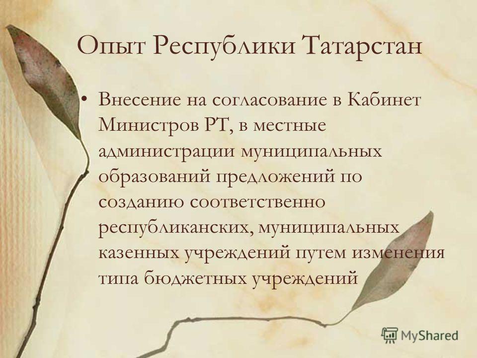 Опыт Республики Татарстан Внесение на согласование в Кабинет Министров РТ, в местные администрации муниципальных образований предложений по созданию соответственно республиканских, муниципальных казенных учреждений путем изменения типа бюджетных учре