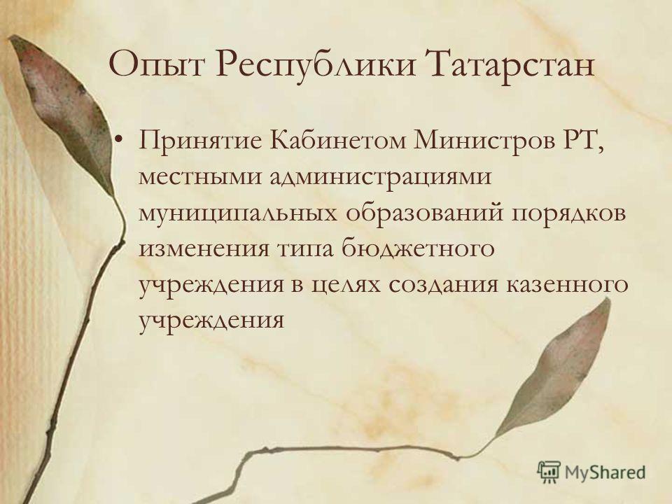 Опыт Республики Татарстан Принятие Кабинетом Министров РТ, местными администрациями муниципальных образований порядков изменения типа бюджетного учреждения в целях создания казенного учреждения