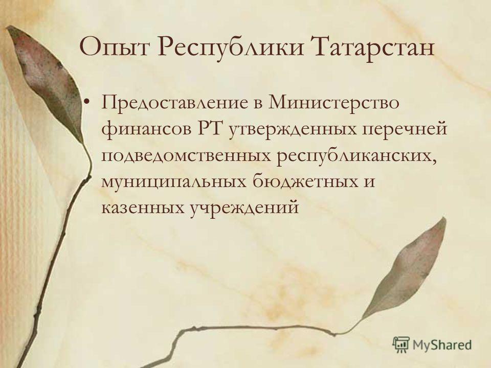 Опыт Республики Татарстан Предоставление в Министерство финансов РТ утвержденных перечней подведомственных республиканских, муниципальных бюджетных и казенных учреждений