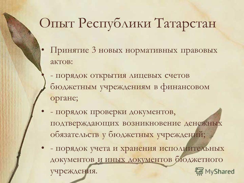 Опыт Республики Татарстан Принятие 3 новых нормативных правовых актов: - порядок открытия лицевых счетов бюджетным учреждениям в финансовом органе; - порядок проверки документов, подтверждающих возникновение денежных обязательств у бюджетных учрежден
