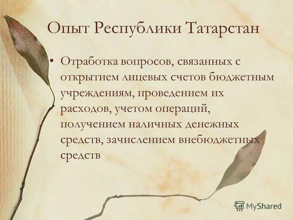Опыт Республики Татарстан Отработка вопросов, связанных с открытием лицевых счетов бюджетным учреждениям, проведением их расходов, учетом операций, получением наличных денежных средств, зачислением внебюджетных средств