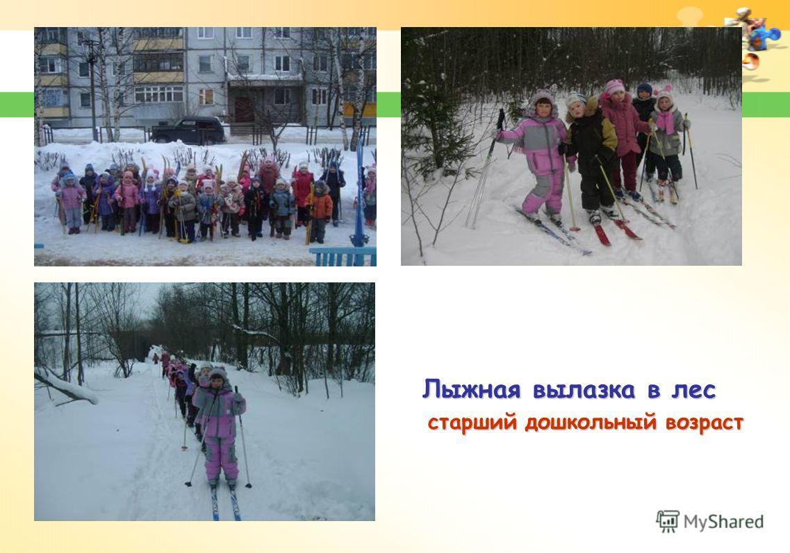 Лыжная вылазка в лес старший дошкольный возраст старший дошкольный возраст