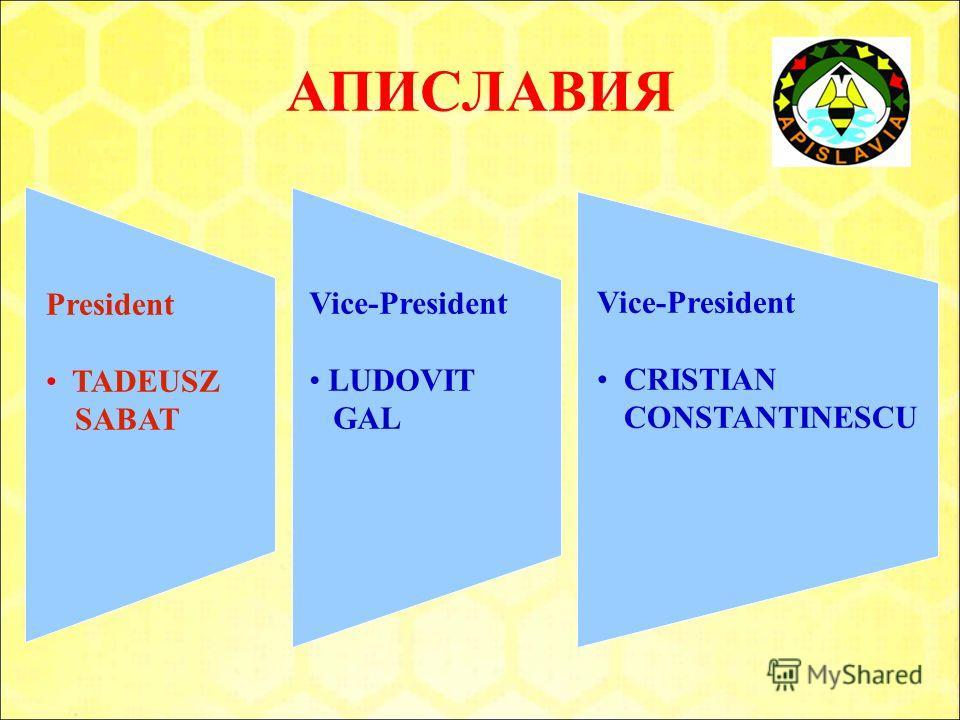 President TADEUSZ SABAT Vice-President LUDOVIT GAL Vice-President CRISTIAN CONSTANTINESCU