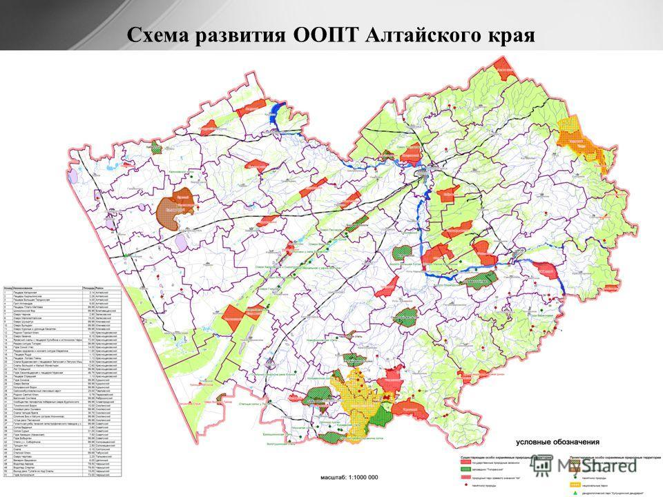 Схема развития ООПТ Алтайского края