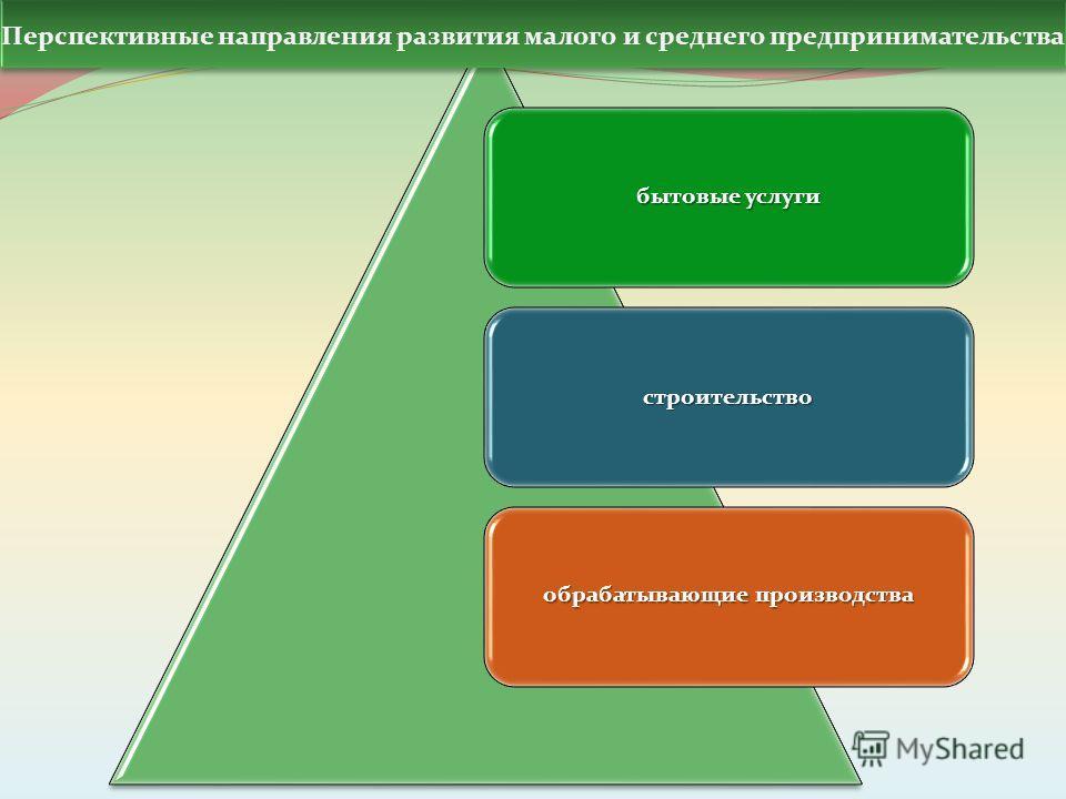 бытовые услуги строительство обрабатывающие производства Перспективные направления развития малого и среднего предпринимательства